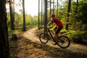 Hiking and Mountain Biking Trails in Galena