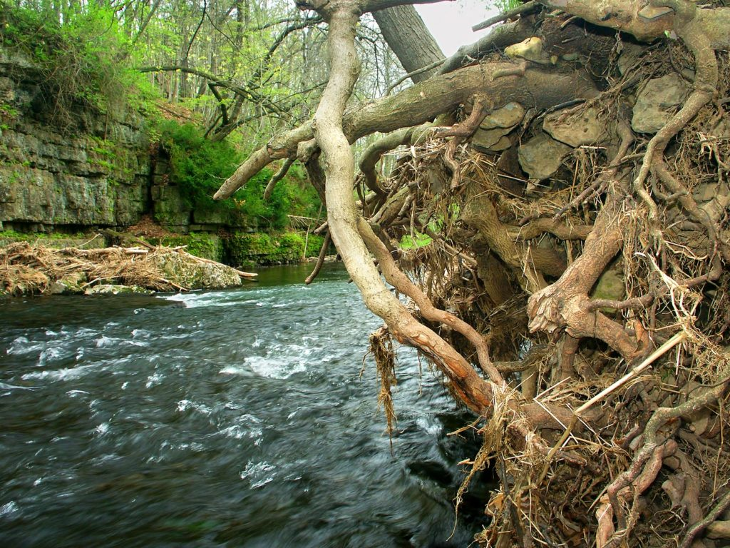 Things to do at Apple River Canyon State Park Near Galena